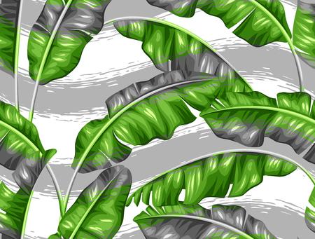 sin patrón, con hojas de plátano. Imagen de la decorativo follaje tropical.