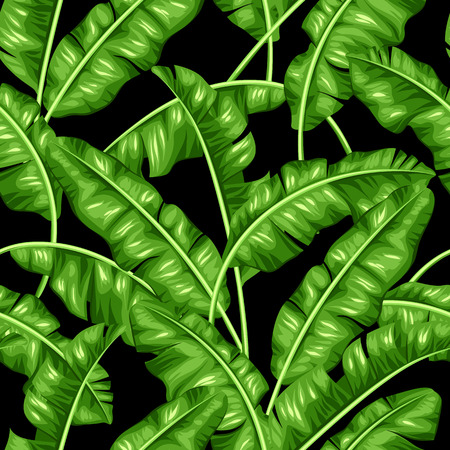 Seamless pattern with banana leaves. Image of decorative tropical foliage. Vettoriali
