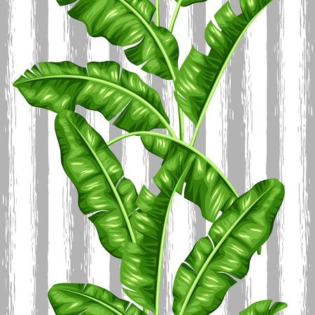Seamless avec des feuilles de bananier. Image de feuillage tropical décoratif.