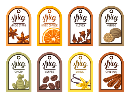 dried: Tags with various spices. Illustration of anise cloves vanilla ginger and cinnamon.