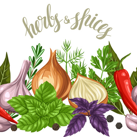 Seamless border with various herbs and spices.