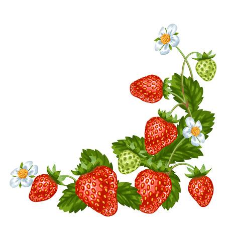 Decoratief element met rode aardbeien. Illustratie van bessen en bladeren.