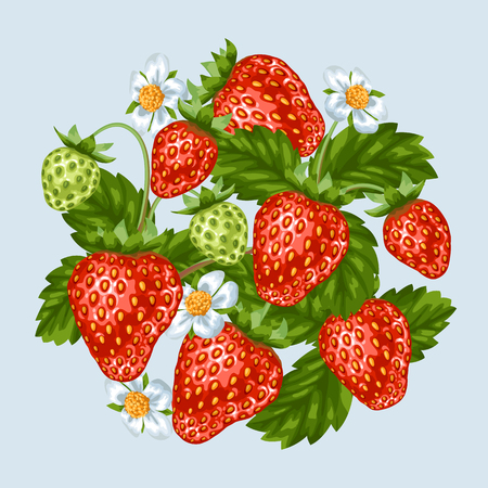 red berries: Background with red strawberries. Illustration of berries and leaves. Illustration