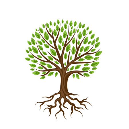 Streszczenie stylizowane drzewo z korzeniami i liśćmi. Ilustracja Naturalne.