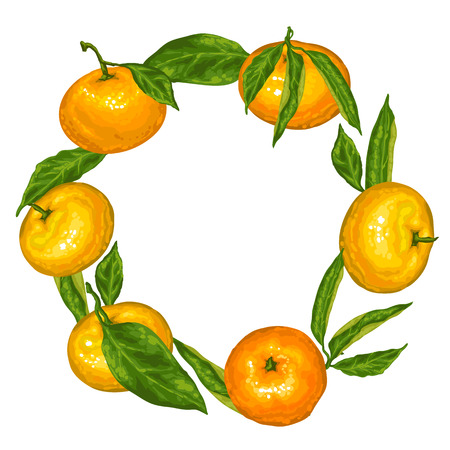 mandarins: Frame with mandarins. Tropical fruits and leaves.