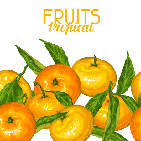 mandarins: Seamless pattern with mandarins. Tropical fruits and leaves. Illustration