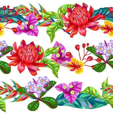 Seamless avec des fleurs Thaïlande. multicolor Tropical plantes, de feuilles et de bourgeons.