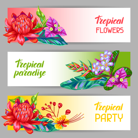 the petal: Banners with Thailand flowers. Tropical multicolor plants, leaves and buds. Illustration