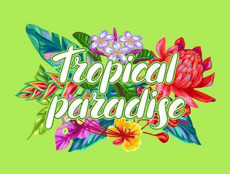 tropical plants: Print with Thailand flowers. Tropical multicolor plants, leaves and buds. Illustration