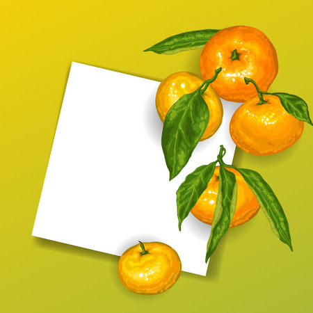 Background with mandarins. Tropical fruits and leaves.