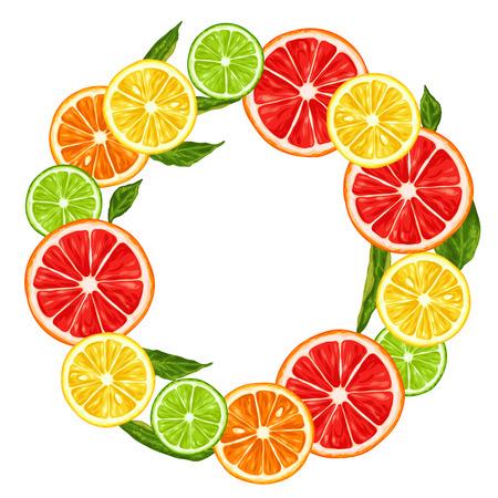 lime: Frame with citrus fruits slices. Mix of lemon lime grapefruit and orange.