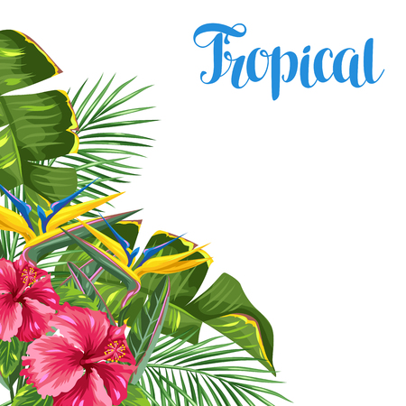 bloom bird of paradise: Invitation card with tropical leaves and flowers. Palms branches, bird of paradise flower, hibiscus