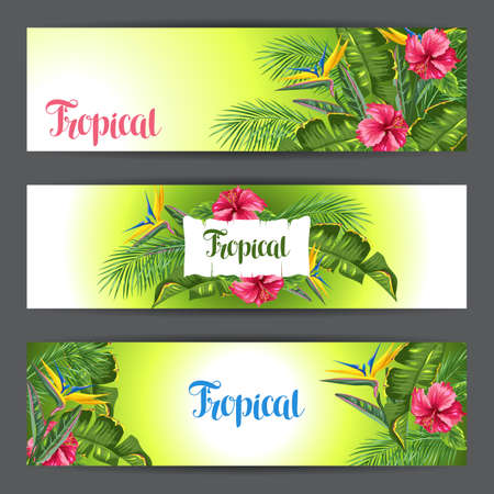 tropical flowers: Banners with tropical leaves and flowers. Palms branches, bird of paradise flower, hibiscus Stock Photo