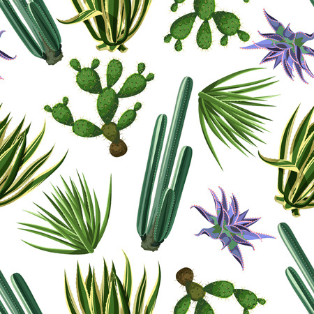 Seamless pattern with cactuses and succulents set. Plants of desert Illustration