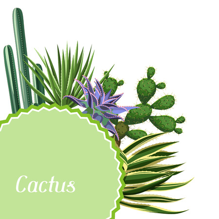 Card with cactuses and succulents set. Plants of desert