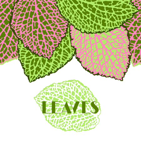 Seamless border with decorative leaves. Natural detailed illustration.