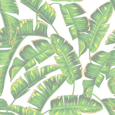 Seamless pattern with banana palm leaves. Decorative tropical foliage Vettoriali