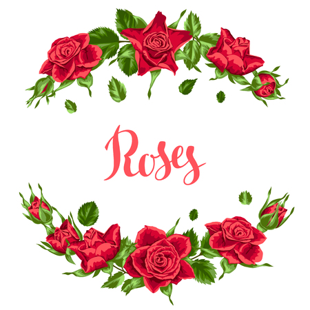 Decorative elements with red roses. Beautiful realistic flowers, buds and leaves Illustration