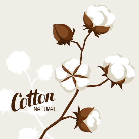 Background with cotton bolls and branches. Stylized illustration Vettoriali
