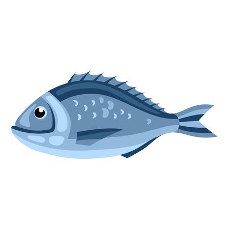 Dorada fish. Isolated illustration of seafood on white background
