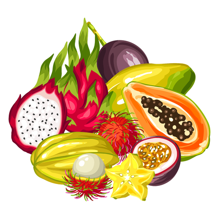 passion  ecology: Exotic tropical fruits collection. Illustration of asian plants