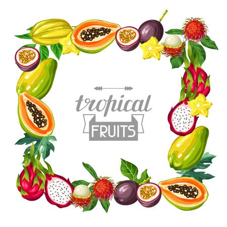 エキゾチックなトロピカル フルーツを使ったフレーム。アジアの植物のイラスト