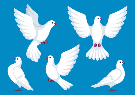 Set of five white doves. Beautiful pigeons faith and love symbol Illustration