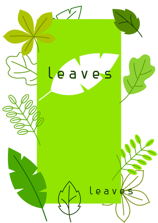 foliage  natural: Natural card with stylized green leaves. Spring or summer foliage Illustration