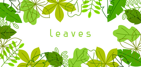 foliage  natural: Natural banner with stylized green leaves. Spring or summer foliage