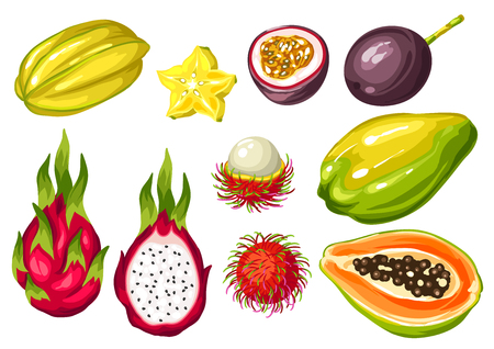 passion  ecology: Exotic tropical fruits set. Illustration of asian plants Illustration
