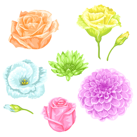 garden flowers: Set of decorative delicate flowers. Objects for decoration wedding invitations, romantic cards