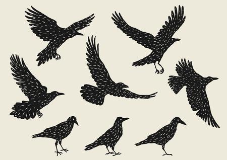 Set von schwarzen Raben. Hand gezeichnet inky Vögel