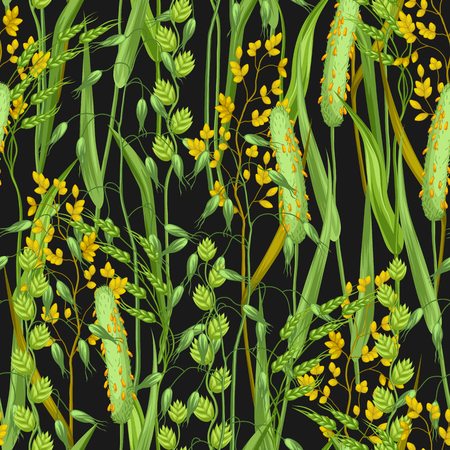 weeds: Seamless pattern with herbs and cereal grass. Floral ornament of meadow plants