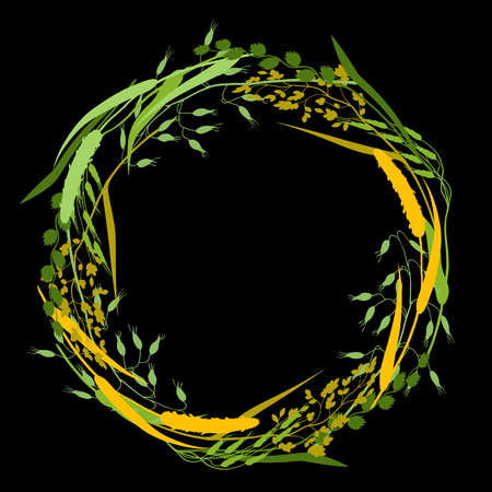 wild oats: Wreath with herbs and cereal grass silhouettes. Floral design of meadow plants