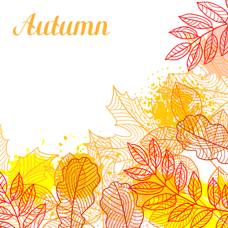 fall leaves: Floral background with stylized autumn foliage. Falling leaves