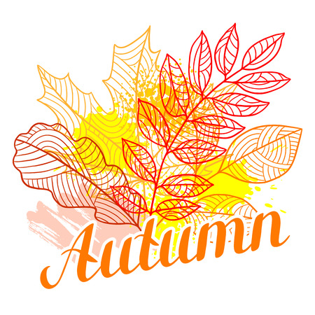 fall leaves: Floral background with stylized autumn foliage. Falling leaves.