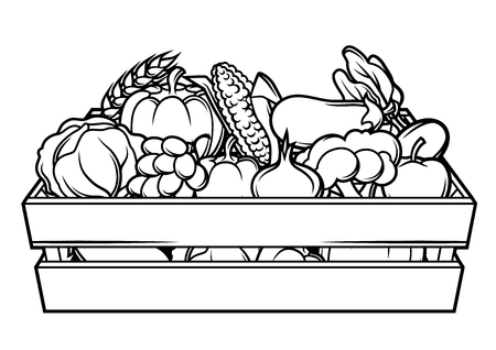Harvest illustration of box with seasonal fruits and vegetables