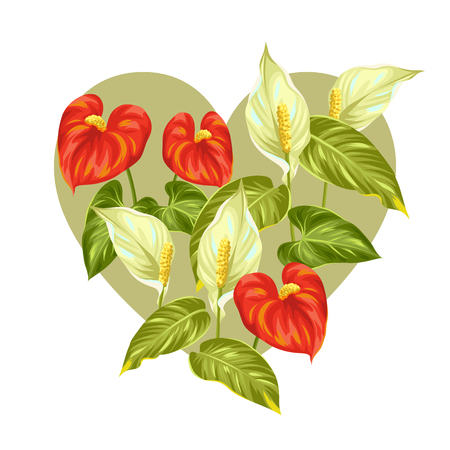 Greeting card with flowers spathiphyllum and anthurium. Illustration