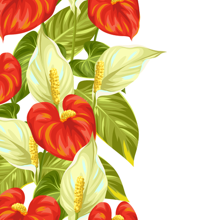 A seamless border with flowers spathiphyllum and anthurium.
