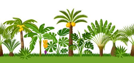 Naadloos patroon met tropische palmbomen. Exotische tropische planten Illustratie van jungle natuur. Stock Illustratie