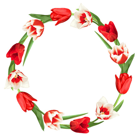 Decorative element with red and white tulips. Beautiful realistic flowers, buds and leaves. Illustration