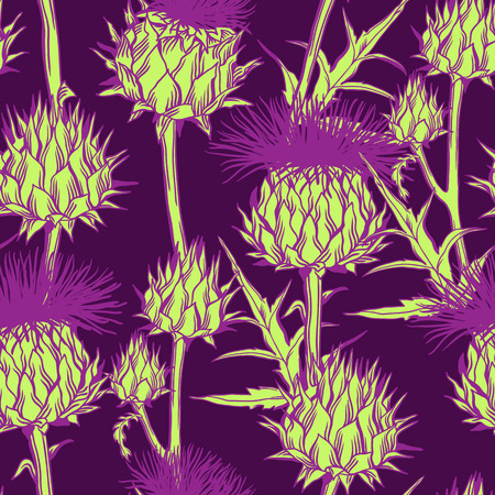 Seamless pattern with onopordum acanthium. Scottish thistle. Vectores
