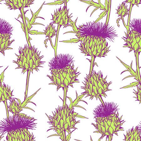 Seamless pattern with onopordum acanthium. Scottish thistle. Vettoriali