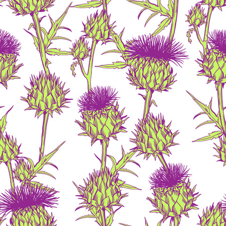 Seamless pattern with onopordum acanthium. Scottish thistle. 矢量图像