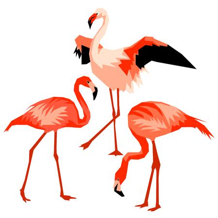 Set of flamingo. Tropical bright abstract birds. Illustration