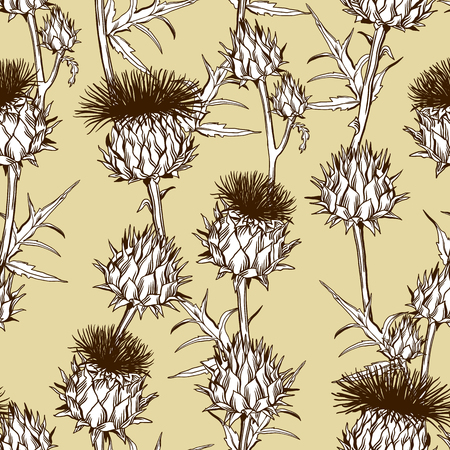 A Seamless pattern with onopordum acanthium. Scottish thistle.