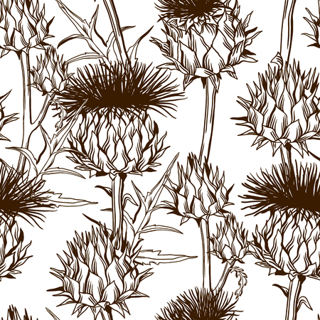 A Seamless pattern with onopordum acanthium on Scottish thistle.