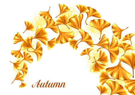 Background with ginkgo biloba leaves. Natural illustration of autumn leaves. Vettoriali