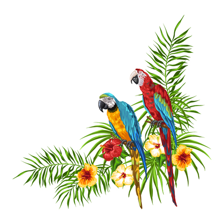 Tropical background with parrots. Palm leaves, hibiscus flowers and exotic birds.
