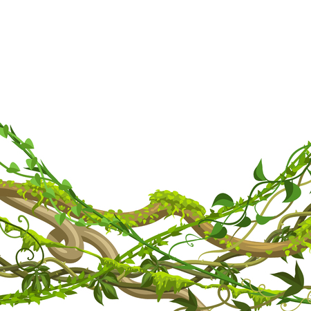Twisted wild lianas branches background. Jungle vines plants. Woody natural tropical rainforest. Vetores